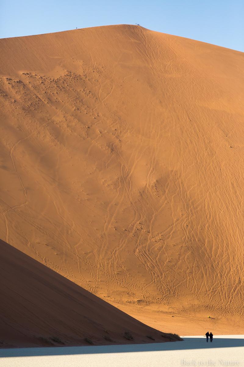 Namibia Namib Desert Dead vlei sesrim sossusvlei dune scenery tree ナミビア ナミブ砂漠 デッドフレイ 絶景 景色 自然 アフリカ