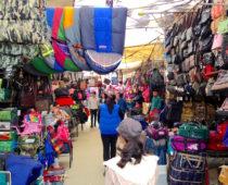 モンゴル最大の市場!ナラントールザハへ行く