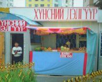 大学でロシア語を学んだ私が、モンゴルで「モンゴル語が読めた」話