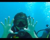 タオ島でダイビング免許!オープンウォーター3日目最終日