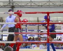 タイの格闘技「ムエタイ」って見たことあります?
