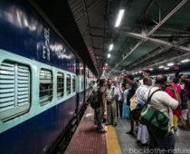 コルカタからダージリンへ!インド旅初の夜行列車と地獄の山道3時間ドライブ!