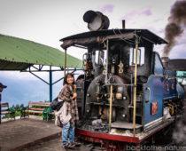 インド・ダージリンで乗れる世界最古の鉄道トイトレインが楽しい!
