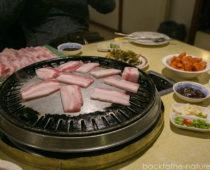 カトマンズでサムギョプサル!美味しい韓国料理店でパワー充電