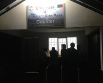 サファリチケットをGET!カジランガ国立公園ってこんな場所