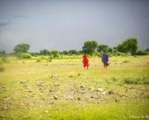 雨季だとサファリはこうなる?念願のタンザニアサファリは最悪の雨スタート
