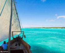 タンザニアで一番綺麗な海!ムネンバ島でシュノーケリング!
