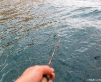 巨大魚は釣れるか?!マラウイ湖で船釣り&吸い込まれる夕日
