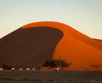 夕日に染まるナミブ砂漠が絶景すぎた