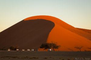 Namib desert dune45 view 世界最古の砂漠・ナミブ砂漠・デューン45(ナミビア )