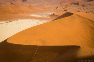 Namib desert deadvlei view 世界最古の砂漠・ナミブ砂漠・デッドフレイ(ナミビア )