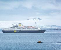 100万円以上の南極上陸クルーズに半額で申し込んだ話