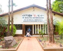 パラグアイに戦後移住した日系人たちの教えは意外にもシンプル